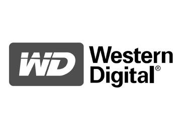Logo-WD